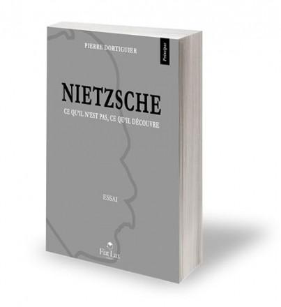 Nietzsche ce qu'il n'est pas, ce qu'il découvre