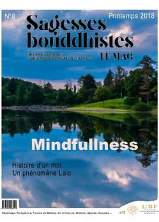 Sagesses bouddhistes la pleine conscience n°6